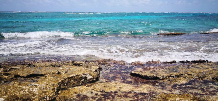 Conoce el Mar de 7 colores de San Andrés, lugar único en el mundo